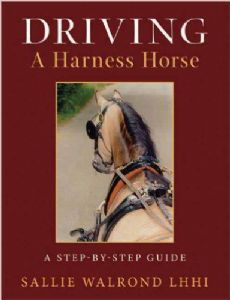 Driving a Harness Horse by Sallie Walrond